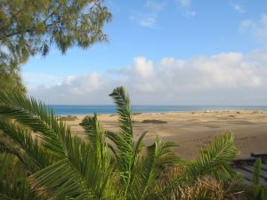 Relax, chill and enjoy Gran Canaria, South, Maspalomas, Canary islands